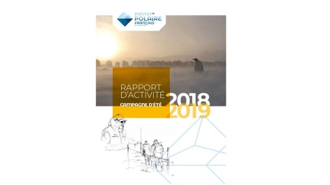 Cover - Rapport_IPEV_2018-2019